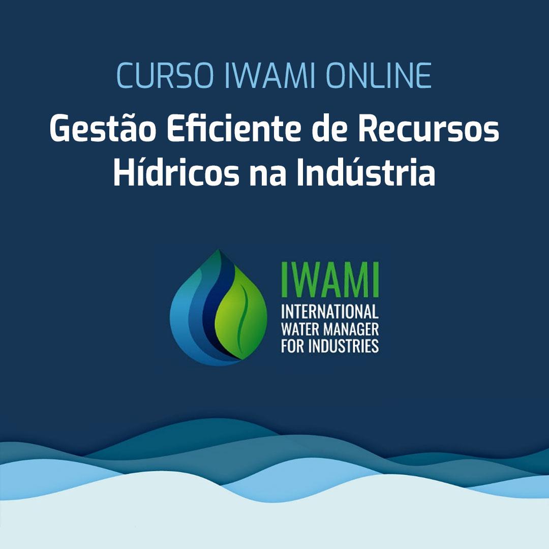 iwami1